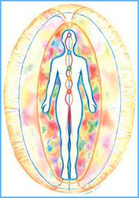 схематичное изображение тонких тел человека