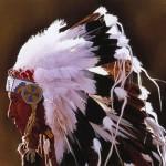 боевой головной убор из перьев